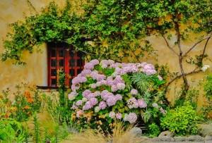 Dee_Kathy_Mission_Carmel_Adobe_Garden(1of1)