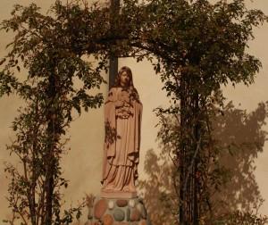 Gardner_Tom_San_Carlos_Cathedral_Statue_in_Garden